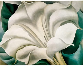 Georgia O'Keeffe / White Trumpet Flower / 1932 / Art / Book Page Print / Published 1990's