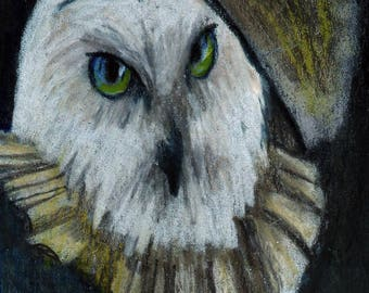 original art  aceo drawing snowy owl portrait anthropomorphic ancestor animal in clothes