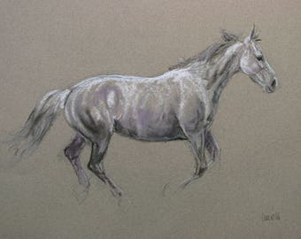 SALE Original horse art equine art energy and movement equine horse charcoal and soft pastel movement art drawing 'Softly' by H Irvine
