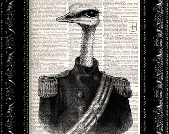 Ostrich Dressed As A Military General -  Animal Humor Geekery  -Vintage Dictionary Print  Book Page Art Upcycled Vintage Book Art