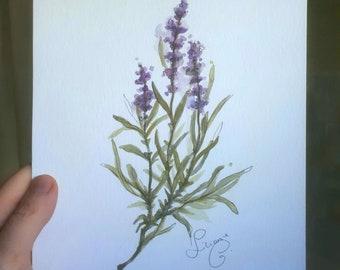 Lavender (original watercolor)