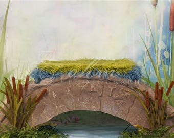 DIGITAL Newborn Backdrop Bridge over a pond. One of a kind prop!