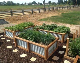 Garden Boxes by Easy Gardeners