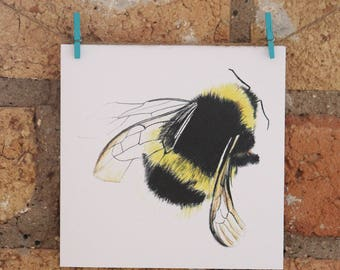 Illustrated Bee Card