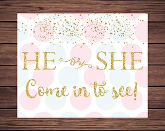 Gender Reveal Sign Gender Reveal He or She Come in to See Sign Pink and Blue Gender Reveal Welcome Sign Instant Download PDF Printable 818