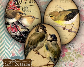 Vintage Birds Digital Collage Sheet 30x40 Oval Images for Pendants, Cabchon, Cameos, Decoupage Paper, Printable Sheet, Digital Sheet