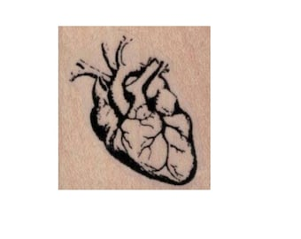 Human heart rubber stamp anatomical medical halloween creepy stamps Cat Kerr  number 20143 wood mounted, unmounted or cling stamp