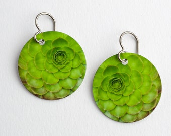 Succulent  Photo Earrings on Titanium Ear Wires