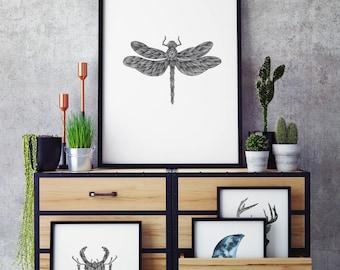 Dragonfly Illustration A3 Print