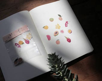 Summer fruits - Transparent Sticker Set