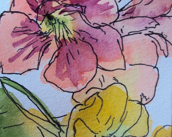"""Pen and watercolour artwork on paper of nasturtium flowers sketch painting by Michele Thomas """"Nasturtiums No.7"""""""