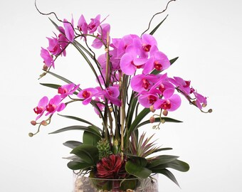 Real Touch Purple Phalaenopsis Orchid with Succulents and Natural Rocks in Glass Pot #11B