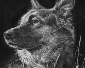 German Shepherd Dog Original Portrait Graphite Pencil Drawing Realistic GSD