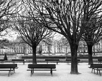 Paris black and white photography, Paris park, benches, Paris photography, black and white photo, bare trees, Paris decor, fine art print