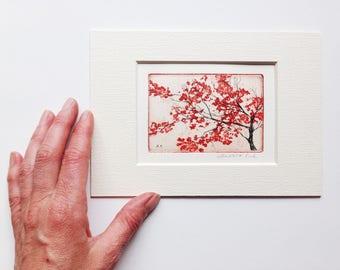 original color etching and aquatint of cherry blossom - sakura