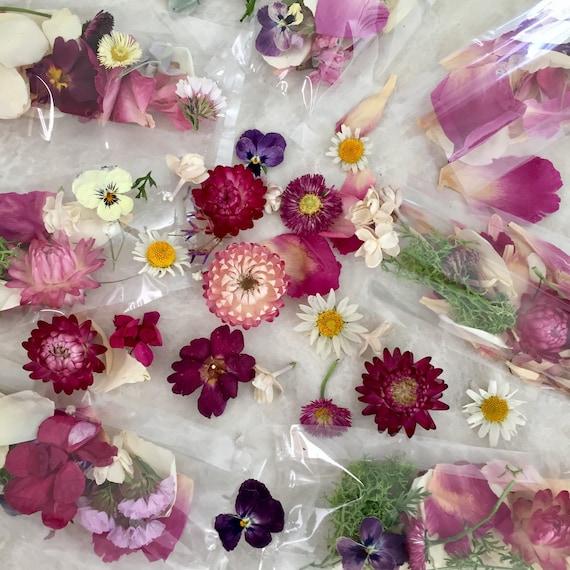 Flower petals craft supply dried flowers wedding confetti for Dried flowers craft supplies
