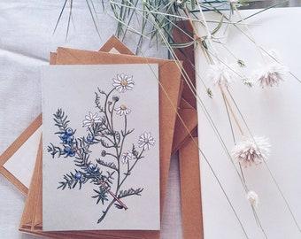 Box Card Set of 10 Blank Botanical Cards and Envelopes