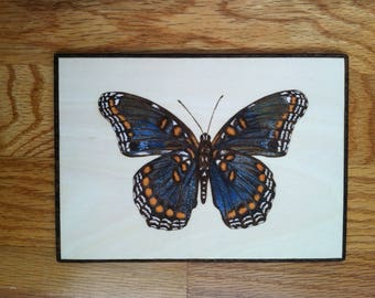 Red-Spotted Purple Butterfly plaque