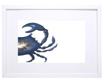 Crab, Blue - Signed Watercolour Print, Coastal Art, Beach House,