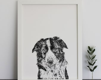 Border Collie Print