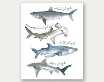 Shark Poster, Shark Print, Shark Species, Watercolor Sharks, Shark Printable, Shark Nursery Decor, Shark Nursery Poster, Boy Nursery Artwork