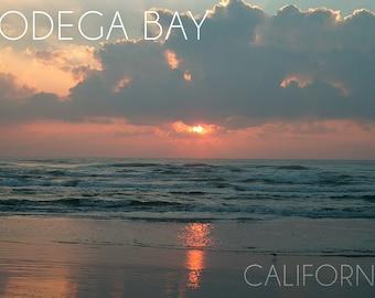Bodega Bay, California - Ocean at Dawn (Art Prints available in multiple sizes)