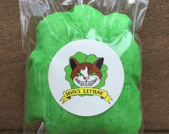 Devil's Lettuce Catnip pillow, Catnip Toy, Cat toys