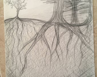 Tree drawing // Graphite // Roots