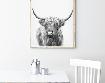 Bull Print, Highland Cow Download, Printable Wall Art, Cattle Photography, Farm Animal Art Print, Black And White Poster, Kitchen Wall Art