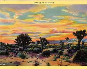 Desert Plants & Cacti at Sunset Southwest Botanical Vintage Postcard 1946