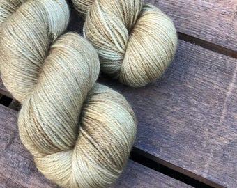 Samenhülse - Superwash Blue Faced Leicester, Silk & Cashmere Splendiferous Sock 100g