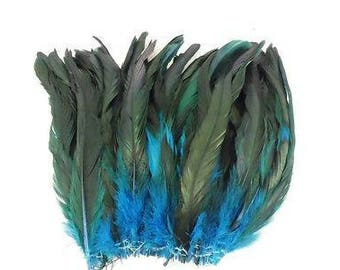 Turquoise half bronze, rooster schlappen feathers, wholesale, craft and costume supply, long feathers