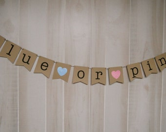 Blue or Pink Banner . Pregnancy Banner . Expecting Banner . Baby Photos . Baby Shower . Gender Reveal . Customized . Custom Color Choices