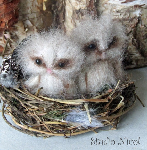 Made to Order -Two Needle Felted Baby Owl Owlets OOAK handmade realistic wildlife fantasy fauxidermy sculpture ornament  Bird Collectable