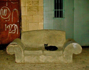 Black Alley Cat, Fine art inkjet print ,8'x8'