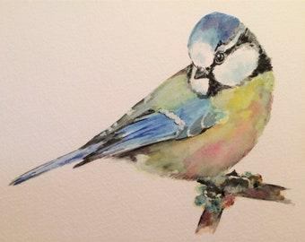 """Blue Tit 12"""" x 10"""" Original watercolour painting"""