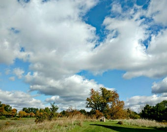 Blue Sky White Clouds, Green Tree Photography, Chair On A Hill, Green Decor, Country Landscape, Midwest Decor, Earth Tones, At the Top