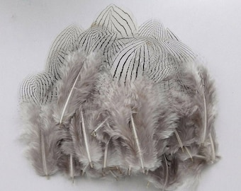 set of 20 feathers natural 2-8cm