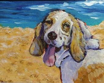 Bassett Beach