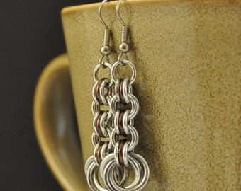 3in3 Brown and Silver Earrings E57