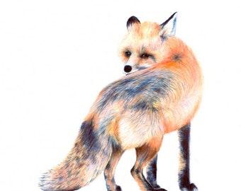 woodland fox poster, fox, forest print, forest wall art,woodland baby shower, fox nursery, fox print, fox art, fox wall art print, art print