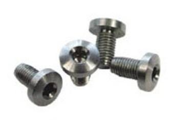 Stainless Steel Standard Hex Screws