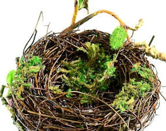 Decorative Bird Nests  | Craft Bird Nest | Birds Nests | Craft Supplies | Natural Crafts