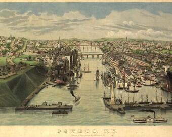 Oswego New York Birds Eye View Map 1855