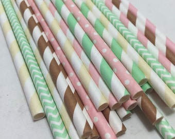 Ice cream sundae social straw pack Pink mint green and brown Striped polka dot chevron blush Paper Straws first girl birthday decorations