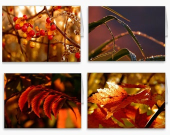 Beautiful Photography Stationery,autumn photography,photography stationery set,fall leaves note cards,gift idea,orange,copper,bronze,fall
