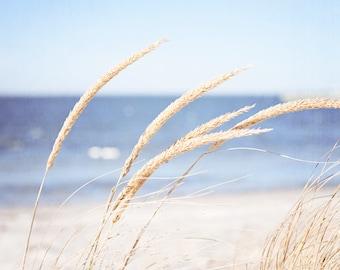 Beach Grass Photography - grasses calming ocean blue light beige sea white cream nature print coastal wall art - 11x14, 8x10 Photograph