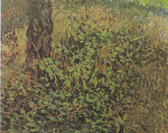 Undergrowth and Two Trees by Vincent Van Gogh Home Decor Wall Decor Giclee Art Print Poster A4 A3 A2 Large Print FLAT RATE SHIPPING