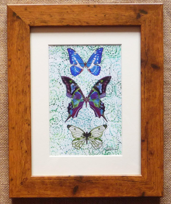 Schmetterling Bild Schmetterlinge eingerahmt
