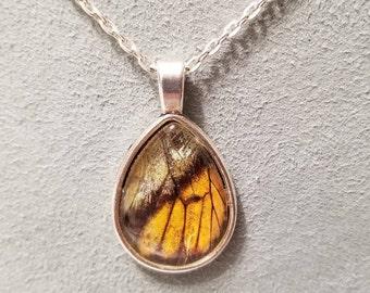 Teardrop real butterfly wing necklace